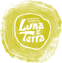 Logo LunaeTerra